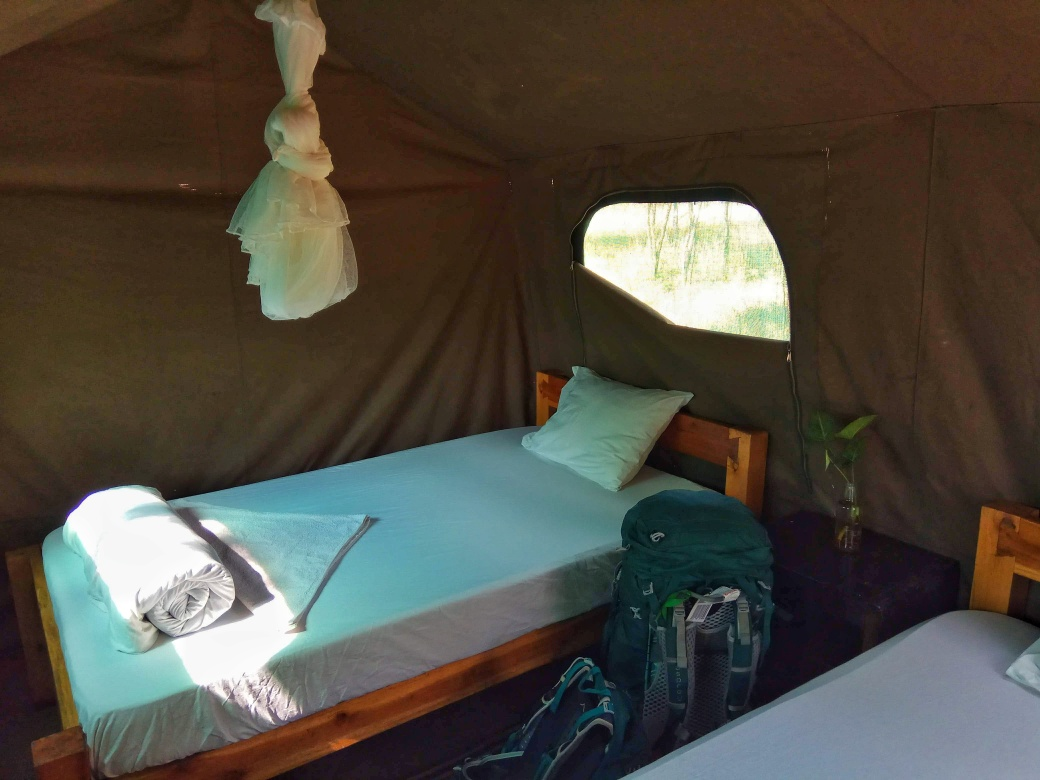 Internal view of my tent