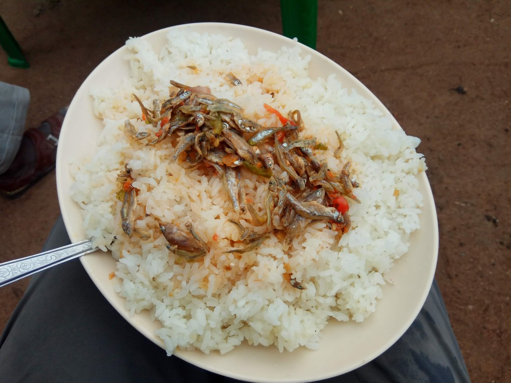 A plate of rice topped with tiny fish